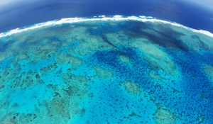Aerial view of the Great Barrier Reef, Far North Queensland, Australia